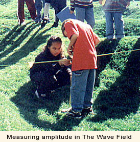 Measuring amplitude in The Wave Field